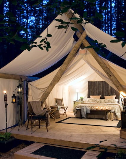 pampered wildnerness, glamping