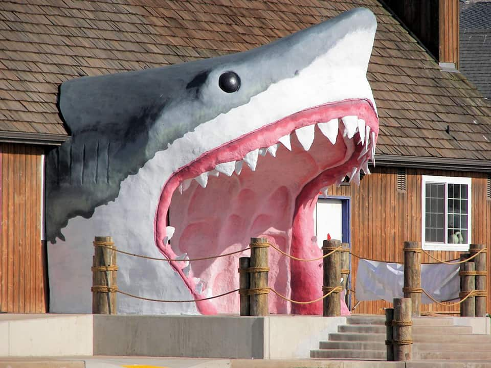 Remember your ocean excursion for a lifetime with a kitschy shark souvenir from Sharky's in Ocean Shores. Or just indulge in some saltwater taffy.