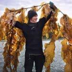 Lifting Kelp lines