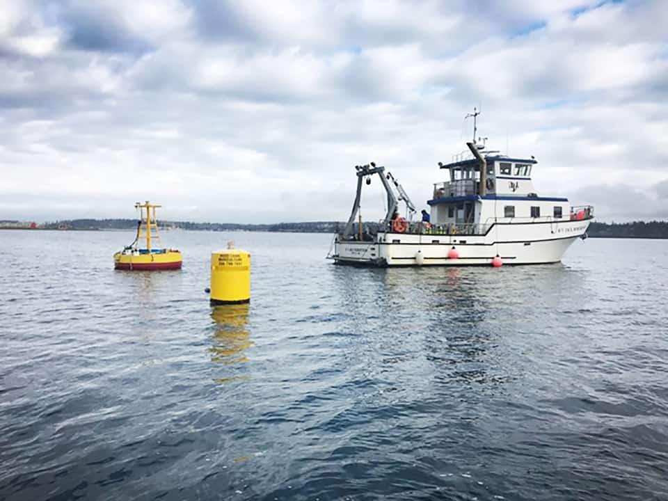 Scientific buoy installation in puget sound