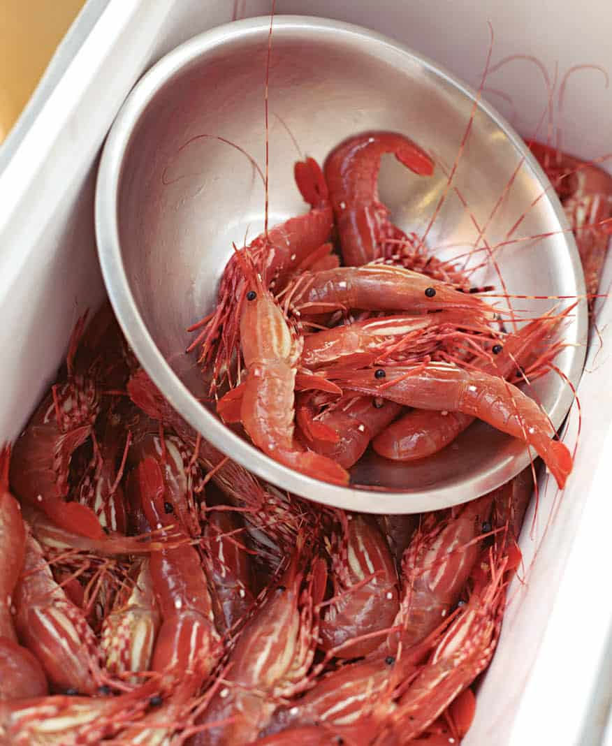 Spot prawns are the short-lived surprises that truly hit the spot