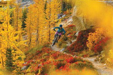 Biking in Washington