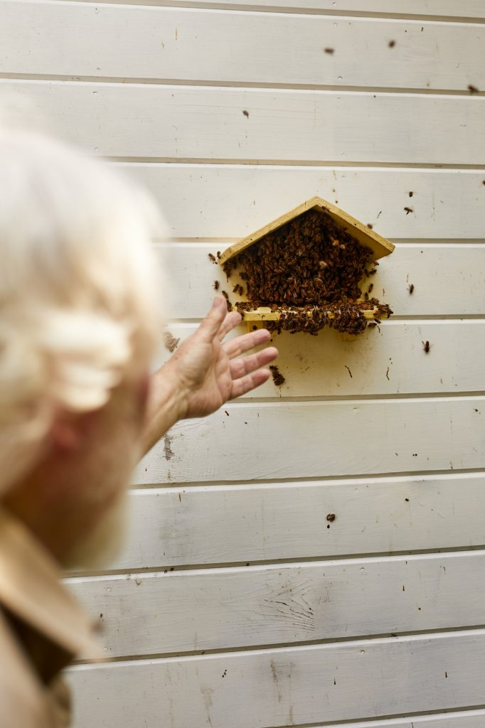 Robert Pyle and a beehive